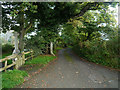 SX1255 : Church Hill, Golant by Chris Gunns