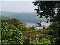 SX1255 : View from the churchyard. Golant by Chris Gunns
