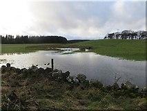 NT2756 : Flooded ground. Mount Lothian by Richard Webb