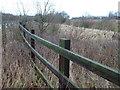 TF1504 : Fence and pond, Waterworks Lane, Glinton by Richard Humphrey
