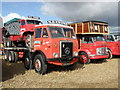 ST9310 : Classic trucks at the Great Dorset by Michael Trolove