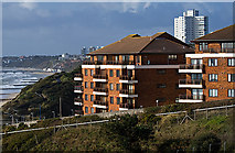 SZ1191 : Boscombe clifftop view Jan 2014 by Mike Searle