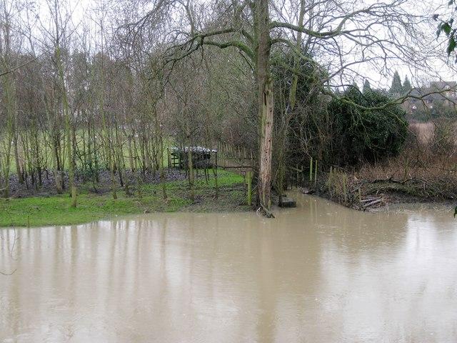 Ditch between floodmeadows behind Ashley Crescent, Warwick 2014, January 29, 13:10