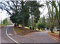 SO8275 : Road junction in Brinton Park, Kidderminster by P L Chadwick