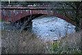 NY4656 : The Warwick Bridge by Ian Greig