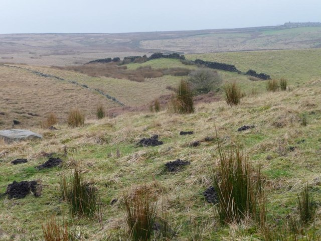 Drystone wall crossing the northern side of Aspar Hill