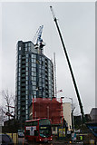 TQ3266 : Crane Recovery Aborted by Peter Trimming