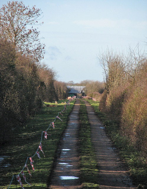 Along the course of the Varsity Line