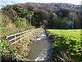 ST4592 : Castrogi Brook, The Cwm, near Llanfair Discoed by Ruth Sharville