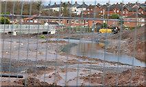 J3773 : The diverted Knock River, Orangefield Park, Belfast (3) by Albert Bridge