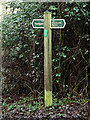 TM2648 : Footpath/byway sign off Broomheath by Adrian Cable