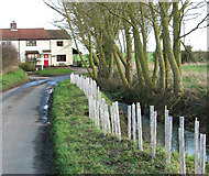 TM3687 : Cottages by Low Road/Mill Lane junction by Evelyn Simak