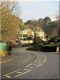 SX9065 : Teignmouth Road, Torquay by Derek Harper