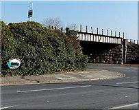 ST1166 : Railway bridge and emblem, Barry Island by Jaggery