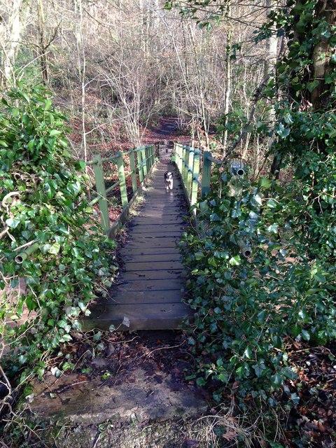 Footbridge over the Rea into Mawley Gardens
