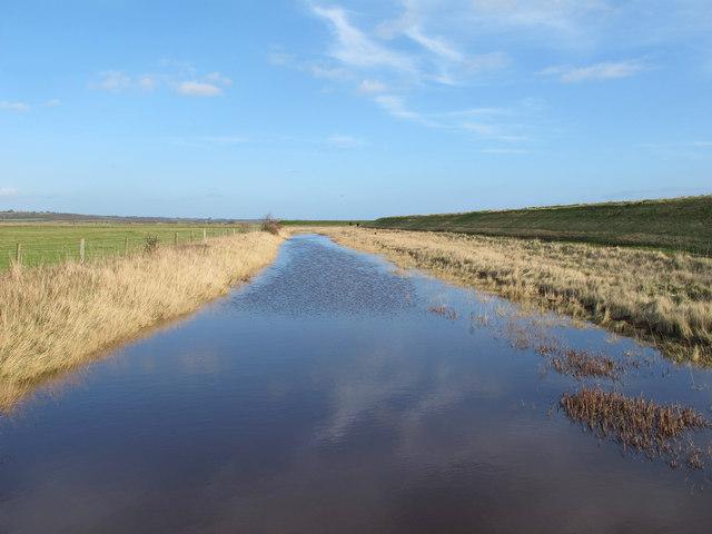 Borrow dyke, Blue House Farm Nature Reserve