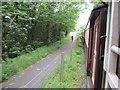 SH4759 : Cyclist on Lon Eifion by Peter Holmes