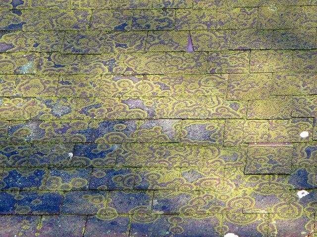 Slate Roof with Lichen: Monington Church
