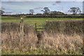ST0773 : Stile and Footpath by Guy Butler-Madden