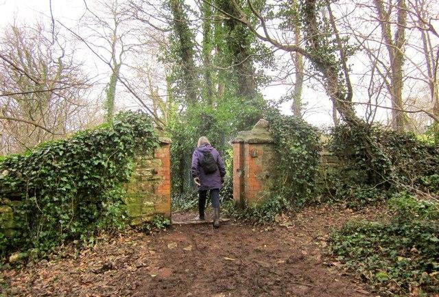 Gateway, Marridge Wood