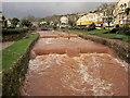 SX9676 : Dawlish Water by Derek Harper