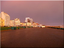 TQ2904 : Hove Sea Wall by Simon Carey