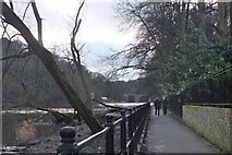 NZ2742 : Riverside walk, Durham by Jim Barton