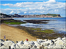 TA0487 : South Bay Views by Scott Robinson