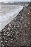 SX9777 : Dawlish : Railway & Coastline by Lewis Clarke