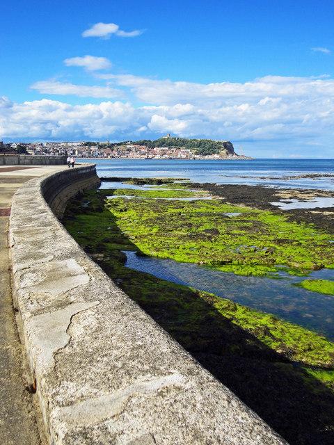 Sea Wall Views Across South Bay
