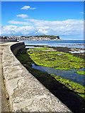 TA0487 : Sea Wall Views Across South Bay by Scott Robinson