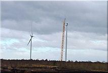 N5025 : Mount Lucas Wind Farm Offaly 07-02-2014 by Kenneth Gallery Smyth