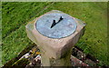 NX9612 : St Bees Sundial by David Rogers