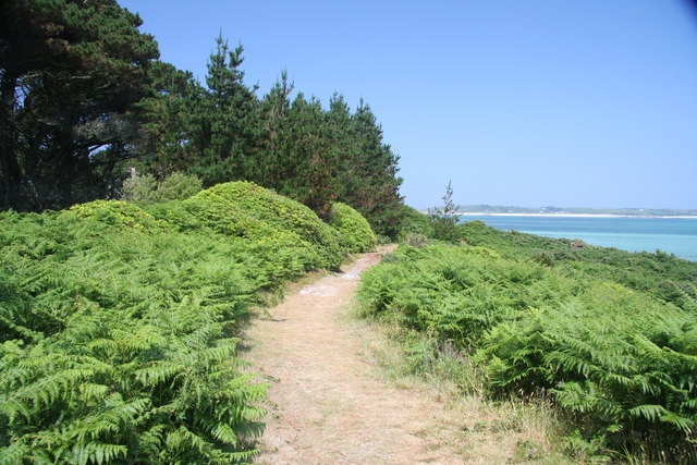 Path near Lizard Point