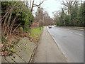 SK5338 : Derby Road near Lenton Abbey with milestone by Alan Murray-Rust