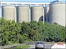 TL8565 : British Sugar Factory, Bury St Edmunds by David Dixon