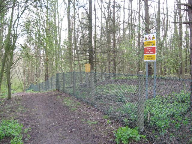Fauld crater woodland track-Hanbury, Staffs