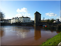 SO5012 : The Monnow in spate at the old bridge, Monmouth by Ruth Sharville