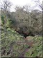 ST5655 : Slippery slope by Neil Owen