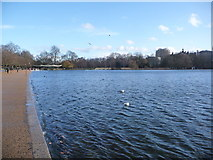 TQ2780 : London: along the Serpentine towards the café by Chris Downer