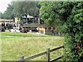 TM0533 : Cows by the Stour by David Dixon