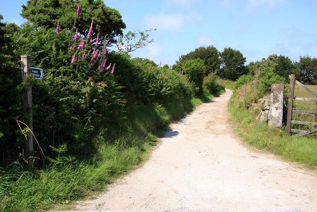 Bridleway near Carharrack