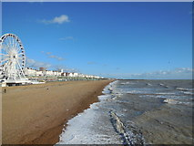 TQ3103 : Beaches East of Brighton Pier by Paul Gillett