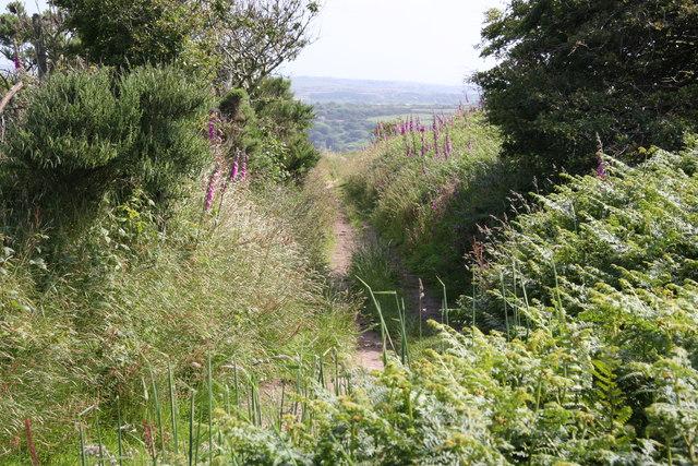 Footpath on Carn Marth