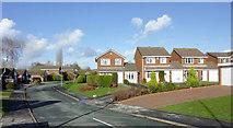 SO8690 : Swin Forge Way in Swindon, Staffordshire by Roger  Kidd