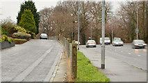 J4073 : The Upper Newtownards Road, Rosepark, Belfast by Albert Bridge