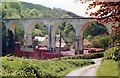 SS6035 : Chelfham Viaduct, Lynton & Barnstaple Railway, 1987 by Ben Brooksbank