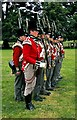 NZ1322 : The Thin Red Line at Raby Castle by Jeff Buck