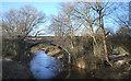 SJ7067 : River Dane under the Railway by Des Blenkinsopp