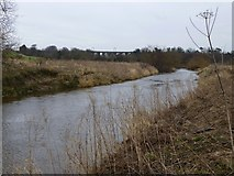 NU2212 : The River Aln below Bilton Mill by Russel Wills